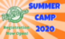Summer Camp web graphic.png