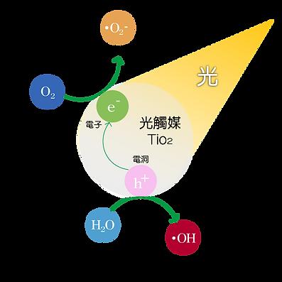 光觸媒-01.png