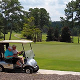 course and cart.jpg