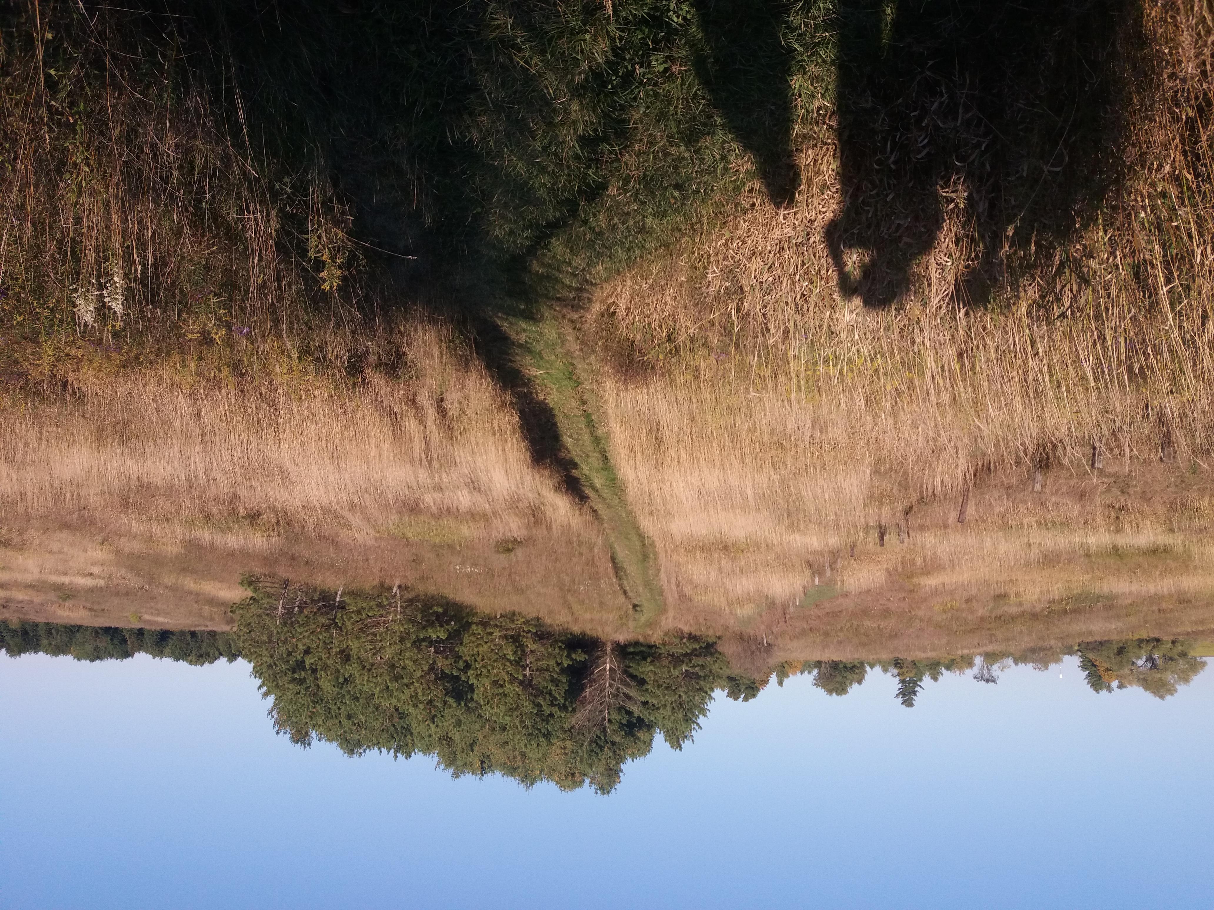 Nashville Conservasion Reserve  גליה