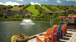 Blue Mountain Resort מאת אבי
