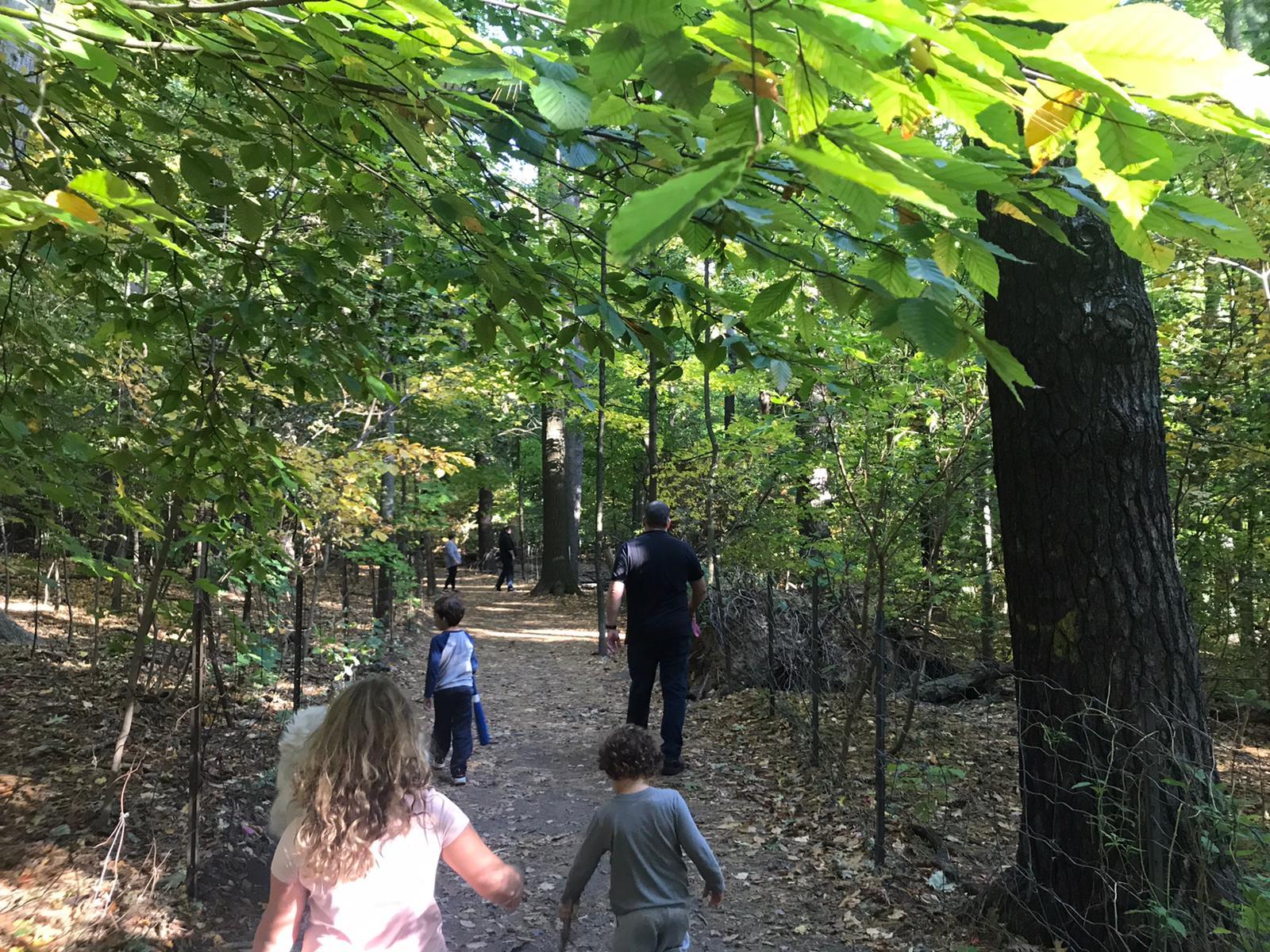 Sherwood Park מאת טל