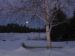 moonlight at Beaverland
