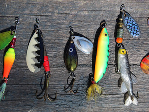 Everybody Baits Differently!