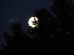 moon oct 4 2017 013