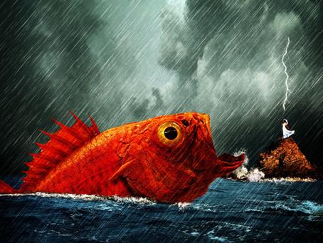 Raining? So what! 6 Tips to fish in the rain at Beaverland.