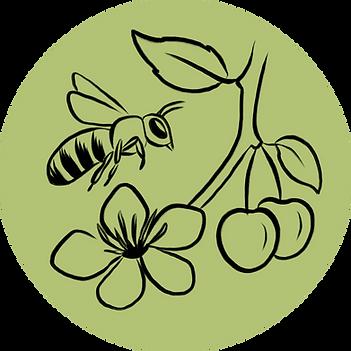 Biodiversitaet_Landwirtschaft.png