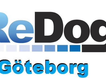 Friskvårdskontroll på din hund