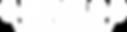 web-logo.PNG.png