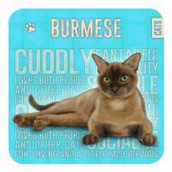 Burmese Cat Coaster
