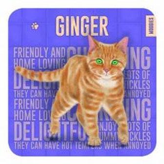 Ginger Cat Coaster