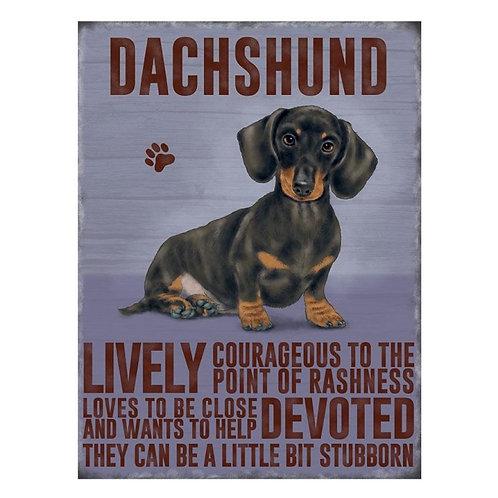 Dog Breed -Dachshund