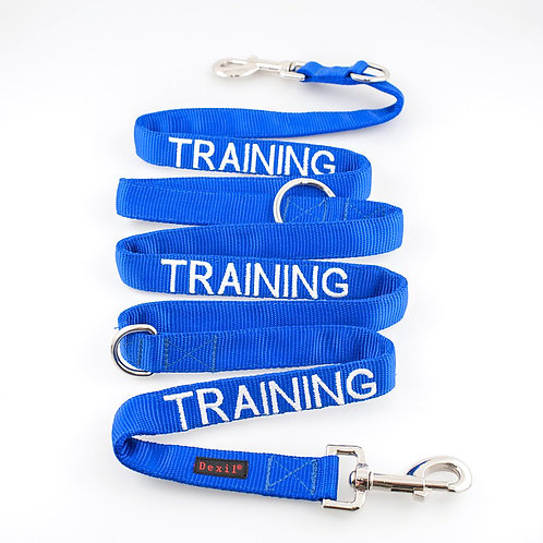 Training Dog Lead