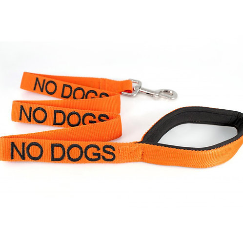 No Dog Dog Lead