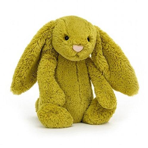 Bashful Zingy Bunny