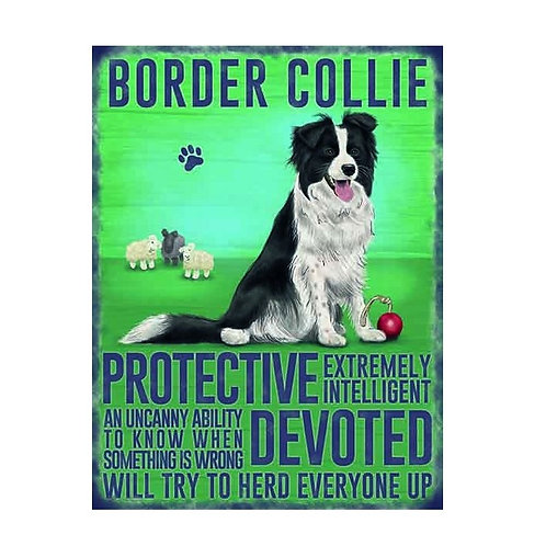 Dog Breed - Border Collie