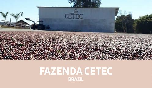 Fazenda Cetec Coffee