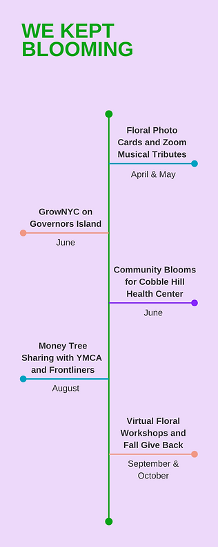 Bloom COVID Infographic.png