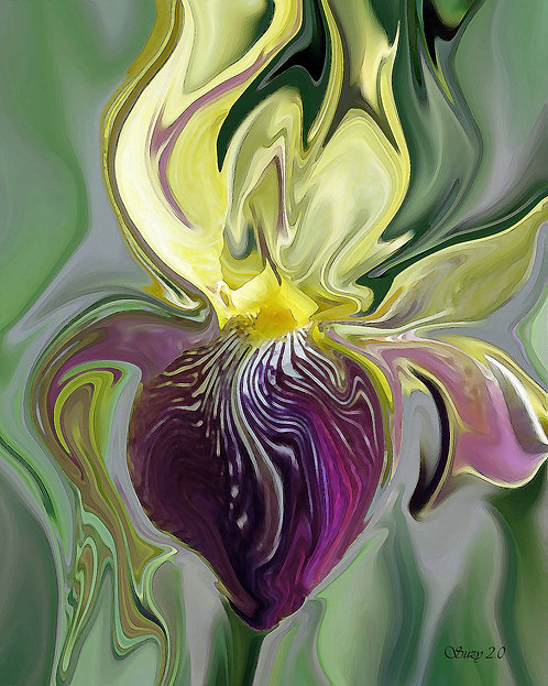 Abstract yellow and purple iris fine art print by Suzy 2.0