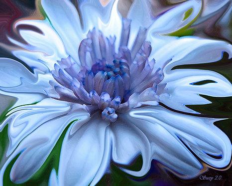 Abstract blue daisy fine art print by Suzy 2.0
