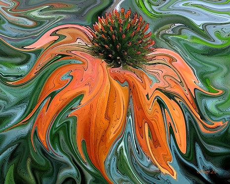 Abstract orange coneflower fine art print by Suzy 2.0