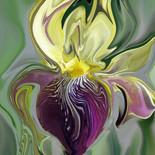 """Whispering Iris"""