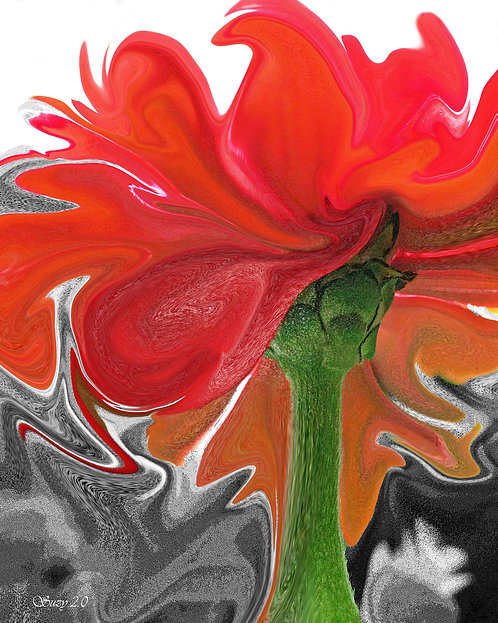 Abstract red tulip fine art print by Suzy 2.0