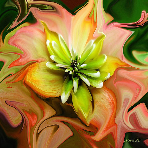 Abstract orange and green succulent fine art print by Suzy 2.0