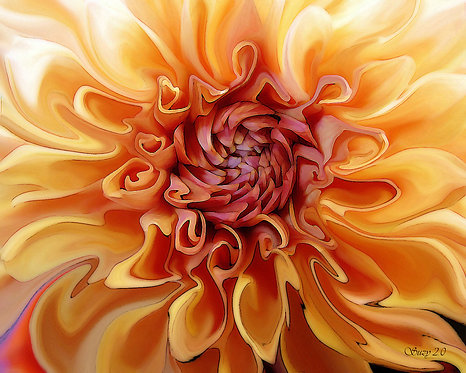 Abstract orange Dahlia giclee print by Suzy 2.0
