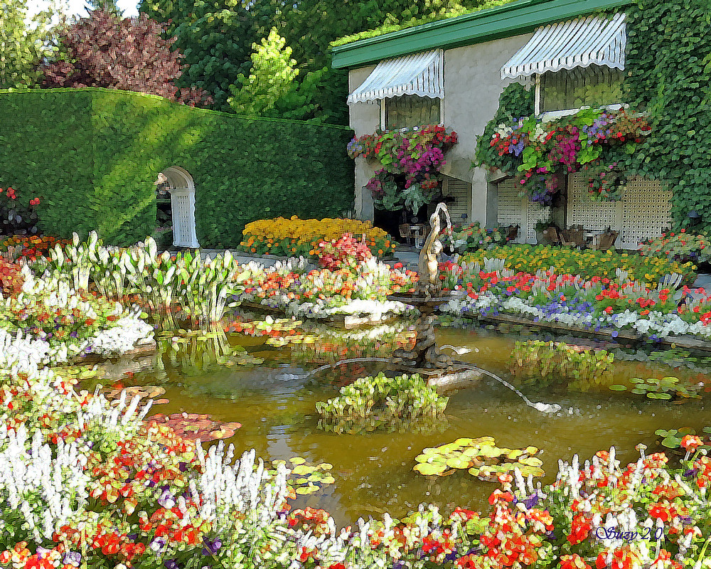Italian Garden at Butchart Gardens; Suzy 2.0