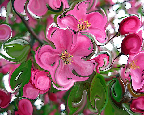 Abstract pink apple blossoms fine art print by Suzy 2.0