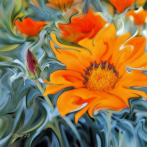 Abstract orange African Daisy fine art print by Suzy 2.0
