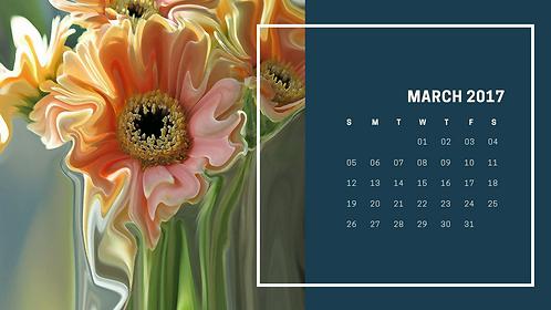 2017 Suzy 2.0 Calendar