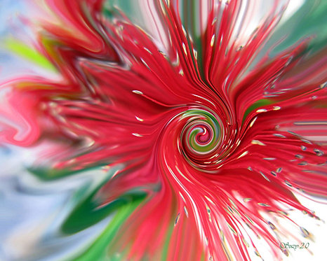 Abstract red bottle brush flower fine art print by Suzy 2.0