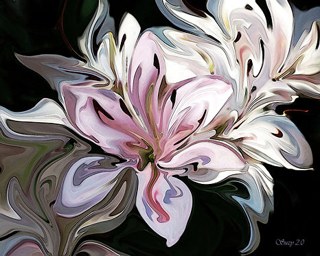 Abstract pink Asiatic Lily fine art print by Suzy 2.0