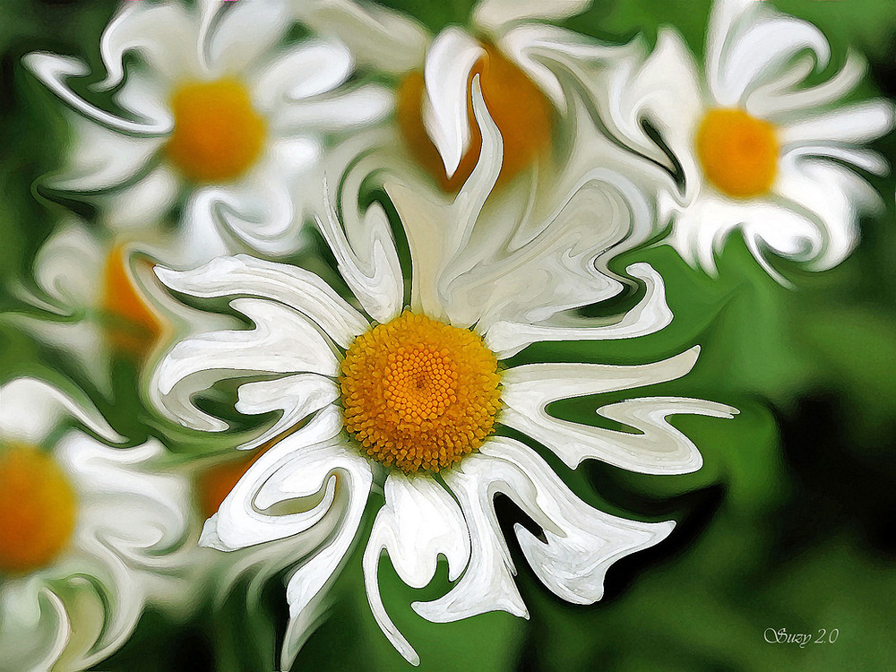 """April Fools"" by Suzy 2.0; a giclee print of white daisies on a green background"