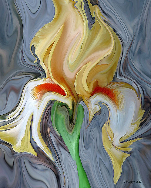 Abstract yellow iris fine art print by Suzy 2.0