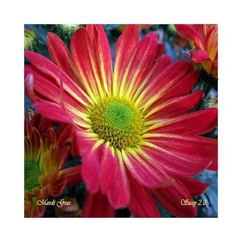 Mardi Gras Floral Tile
