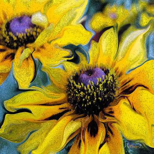 Abstract black eyed susan fine art print by Suzy 2.0
