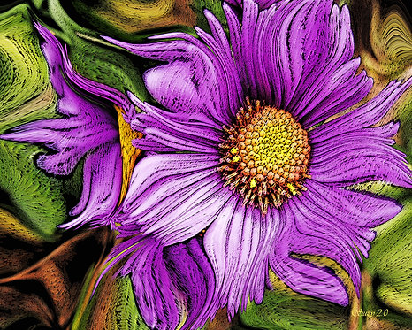Abstract purple Aster fine art print by Suzy 2.0