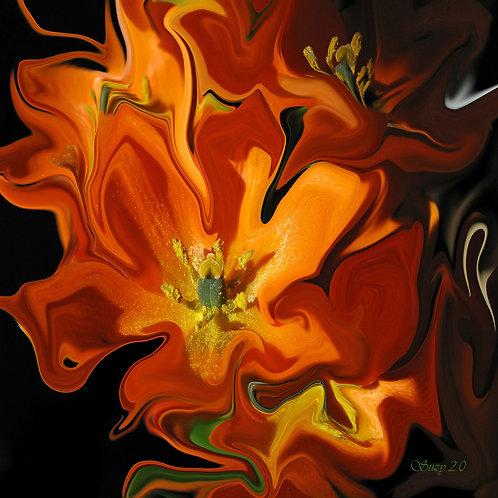 Abstract orange tulips fine art print by Suzy 2.0