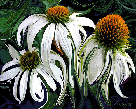 Abstract white coneflowers fine art print by Suzy 2.0