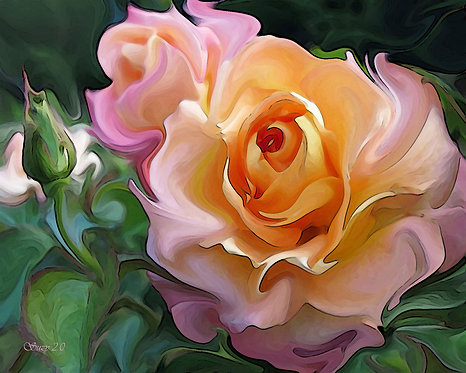 Abstract pale pink and orange rose fine art print by Suzy 2.0