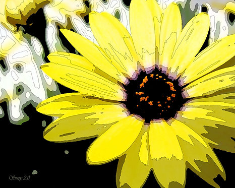 Abstract yellow African daisy fine art print by Suzy 2.0