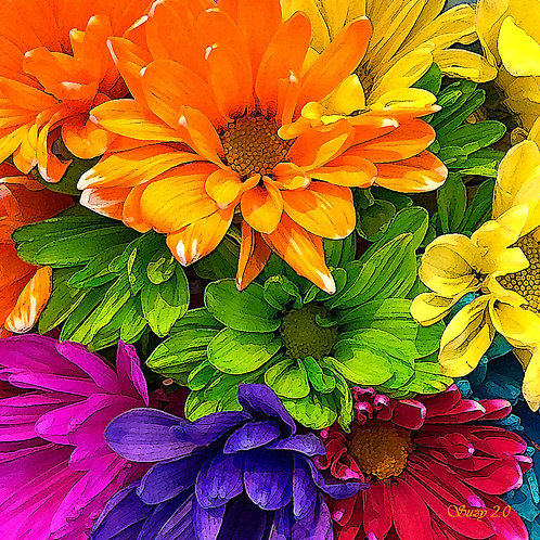 Abstract multi-colored daisies fine art print by Suzy 2.0