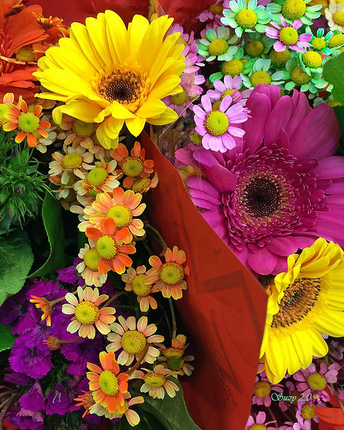 A macro giclee print of a multi-colored daisy bouquet by Suzy 2.0