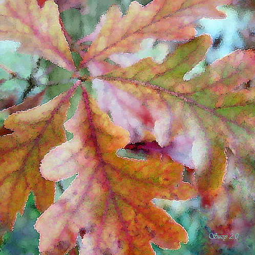 Abstract fall colored oak leaves fine art print by Suzy 2.0