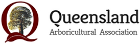 qaa-logo-new_edited.png
