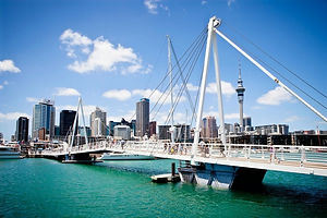 AucklandCouncil_38-266188_edited.jpg