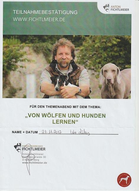 Von_Wölfen_und_Hunden_lernen_001.jpg